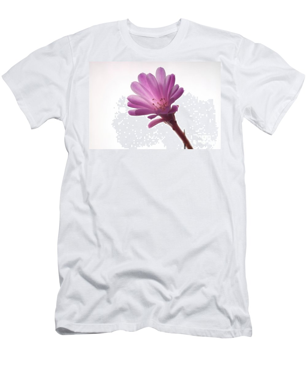 Cactoideae Men's T-Shirt (Athletic Fit) featuring the photograph Notocactus Herderii Flower by Raul Gonzalez Perez
