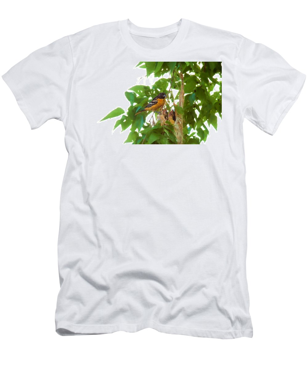 Orchard Oriole Men's T-Shirt (Athletic Fit) featuring the photograph Oriole And Babies by David Arment