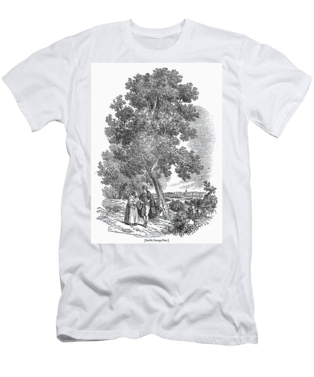 19th Century Men's T-Shirt (Athletic Fit) featuring the photograph Spain: Orange Tree by Granger