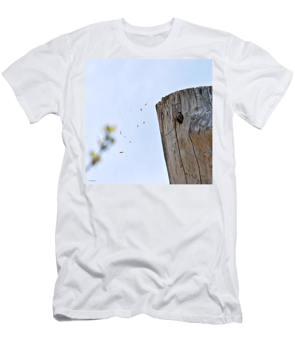 Yellow Shafted Northern Flicker Men's T-Shirt (Athletic Fit) featuring the photograph Spring Cleaning by Edward Peterson