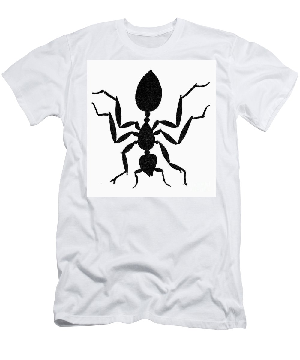 Animal Men's T-Shirt (Athletic Fit) featuring the photograph Symbol: Ant by Granger