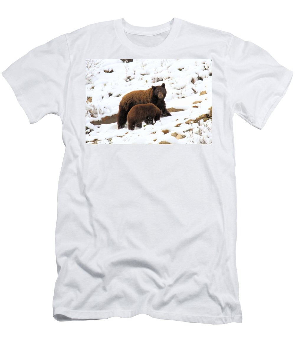 Black Bears Men's T-Shirt (Athletic Fit) featuring the photograph The Winter Guide by Adam Jewell
