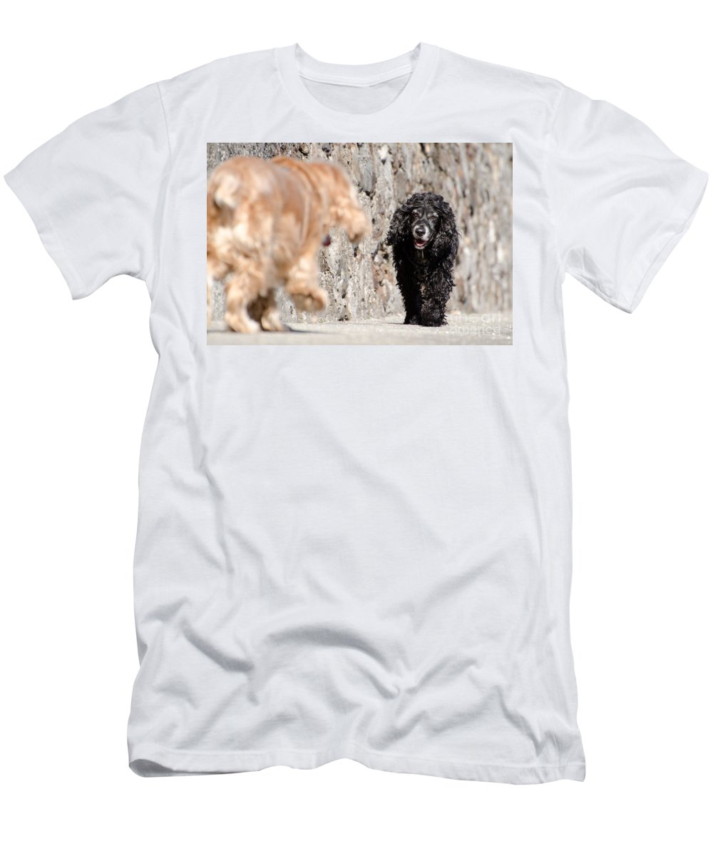 Dog Men's T-Shirt (Athletic Fit) featuring the photograph Two Dogs by Mats Silvan