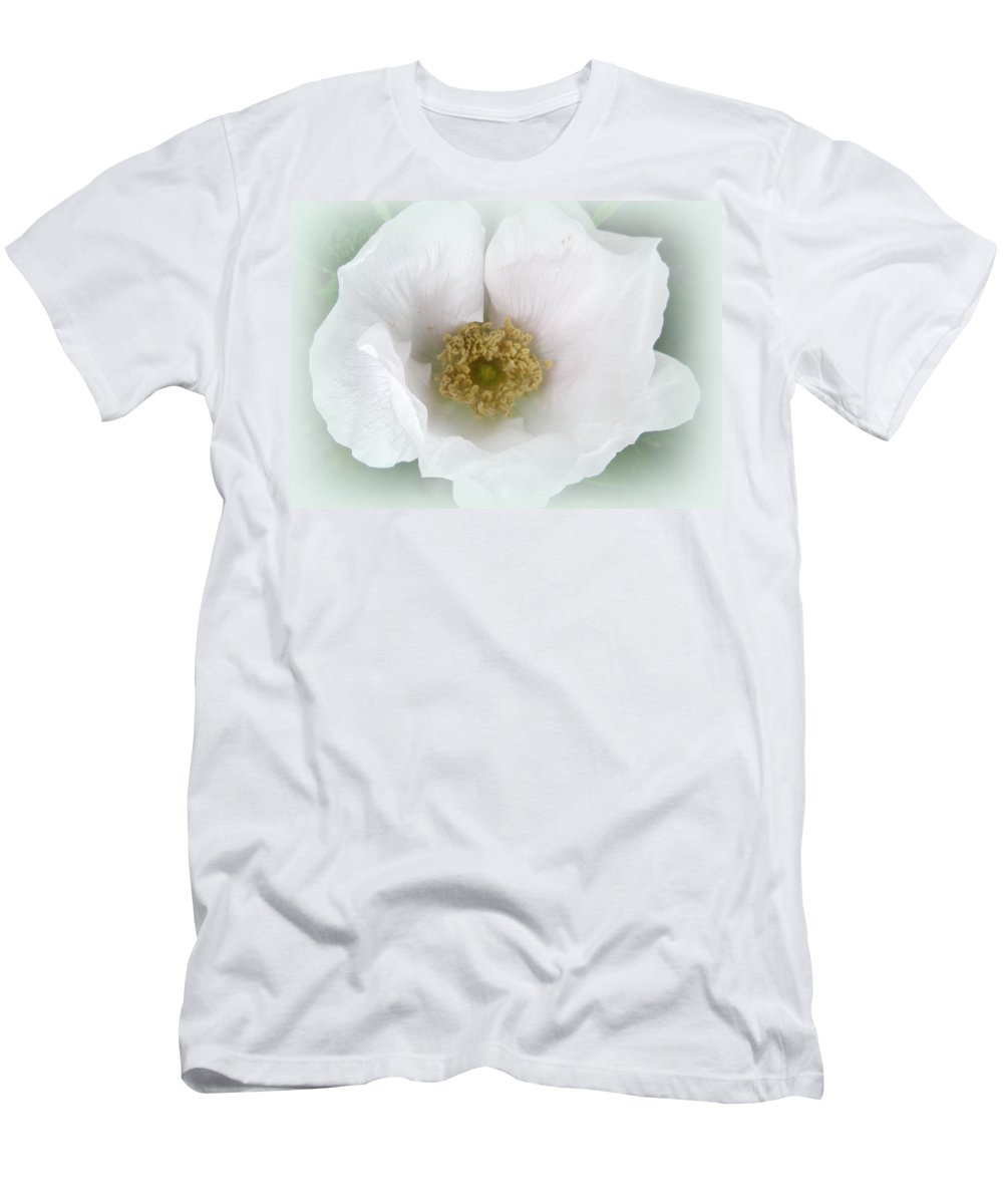 Rose Men's T-Shirt (Athletic Fit) featuring the photograph White Beach Rose - Rosa Rugosa by Mother Nature
