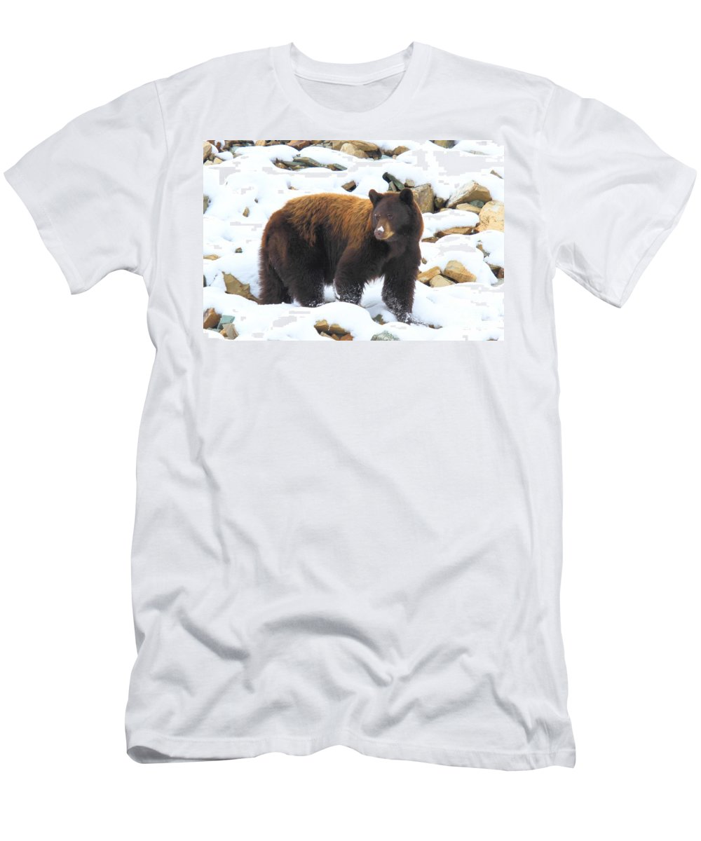 Black Bear Men's T-Shirt (Athletic Fit) featuring the photograph White Nose by Adam Jewell