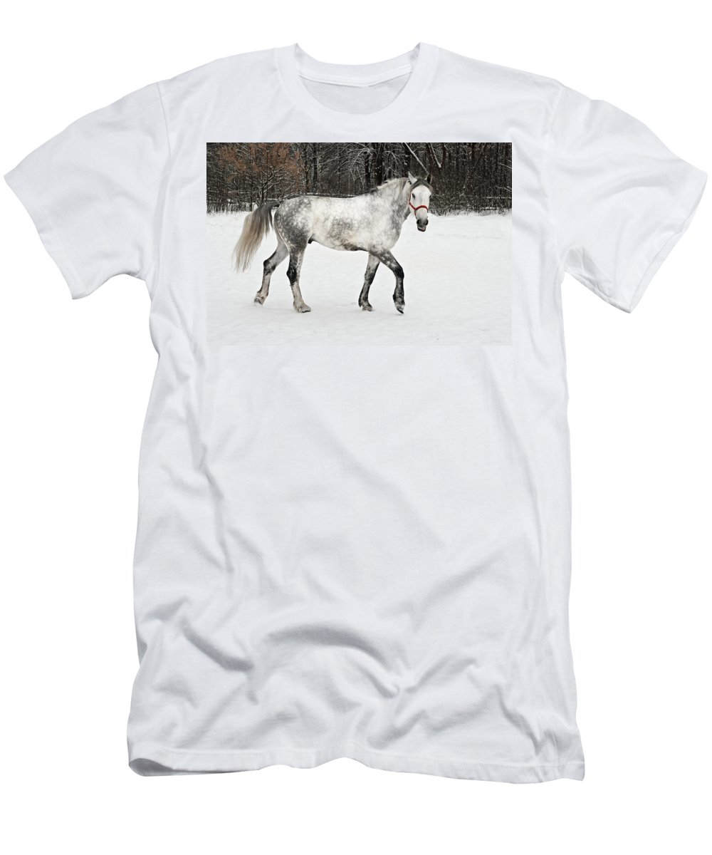 Bushes Men's T-Shirt (Athletic Fit) featuring the photograph Light Grey Horse Goes On A Winter Glade by Vadzim Kandratsenkau