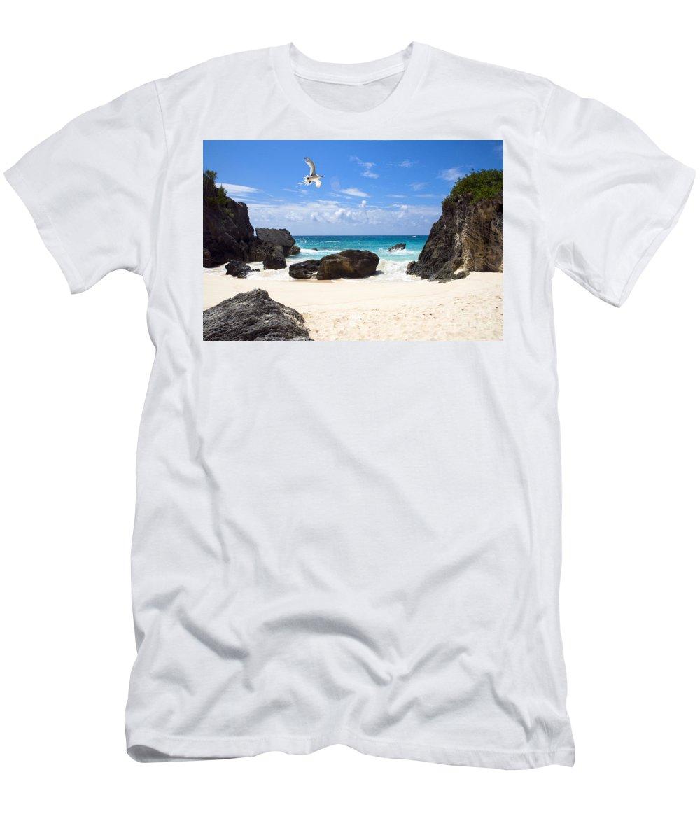 Beach Men's T-Shirt (Athletic Fit) featuring the photograph Beach Bird by John Greim