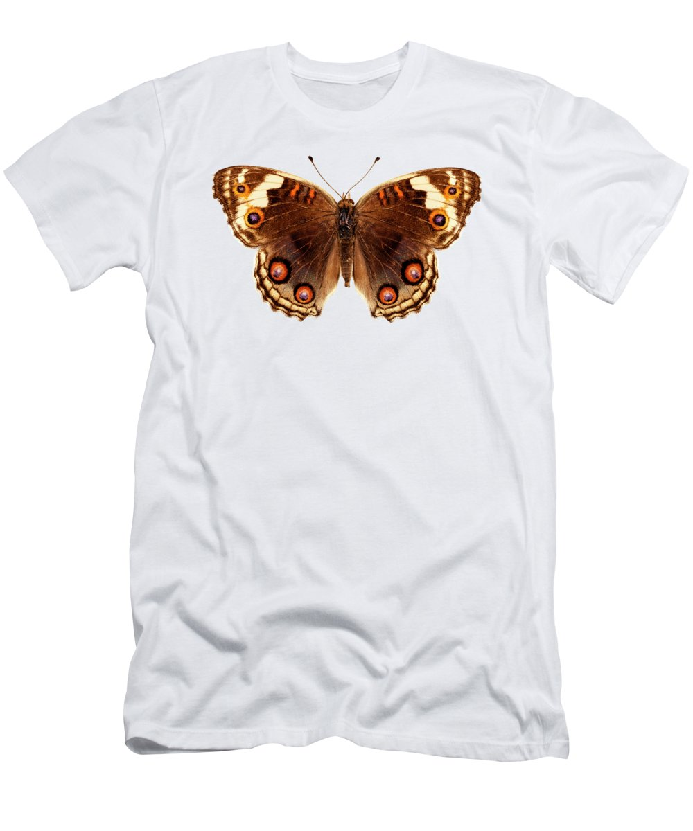Indonesia Men's T-Shirt (Athletic Fit) featuring the painting Butterfly Species Junonia Orithya by Pablo Romero