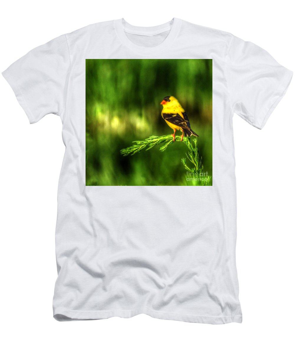 Bombay Hook Men's T-Shirt (Athletic Fit) featuring the photograph Goldfinch On Grass by Rrrose Pix
