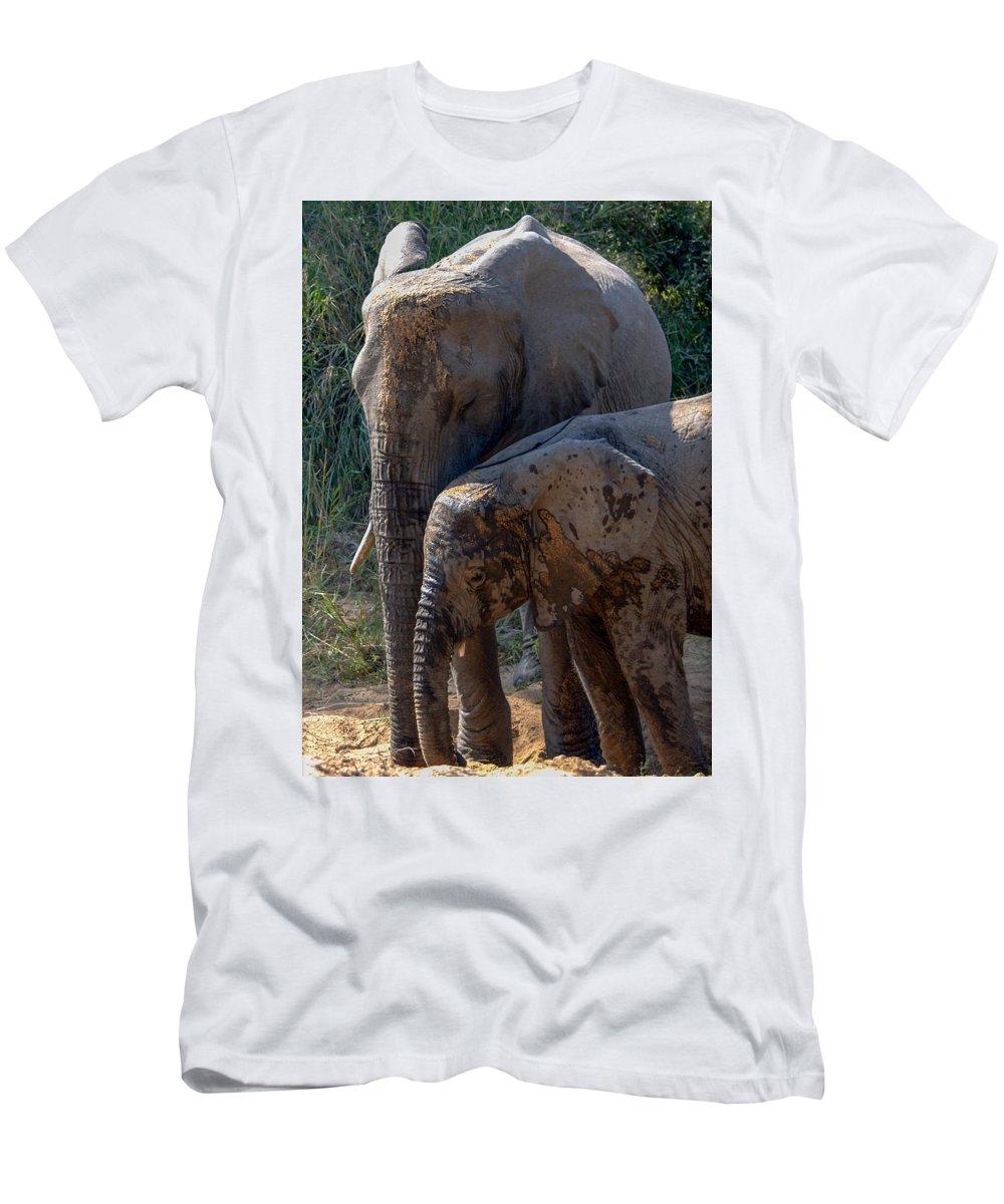 Elephants Men's T-Shirt (Athletic Fit) featuring the photograph Mud Bath by Mari van Bosch