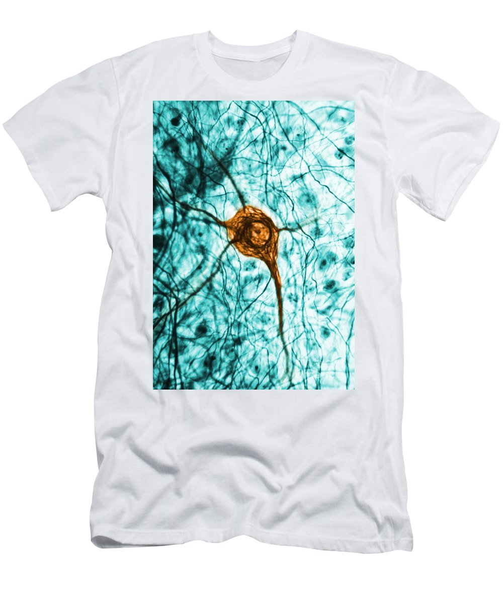 Cell Men's T-Shirt (Athletic Fit) featuring the photograph Neuron, Tem 3 by Science Source