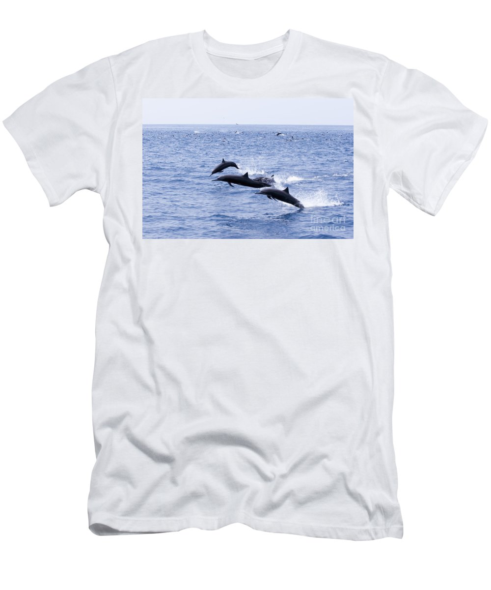 Amaze Men's T-Shirt (Athletic Fit) featuring the photograph Spinner Dolphins by Rick Gaffney - Printscapes