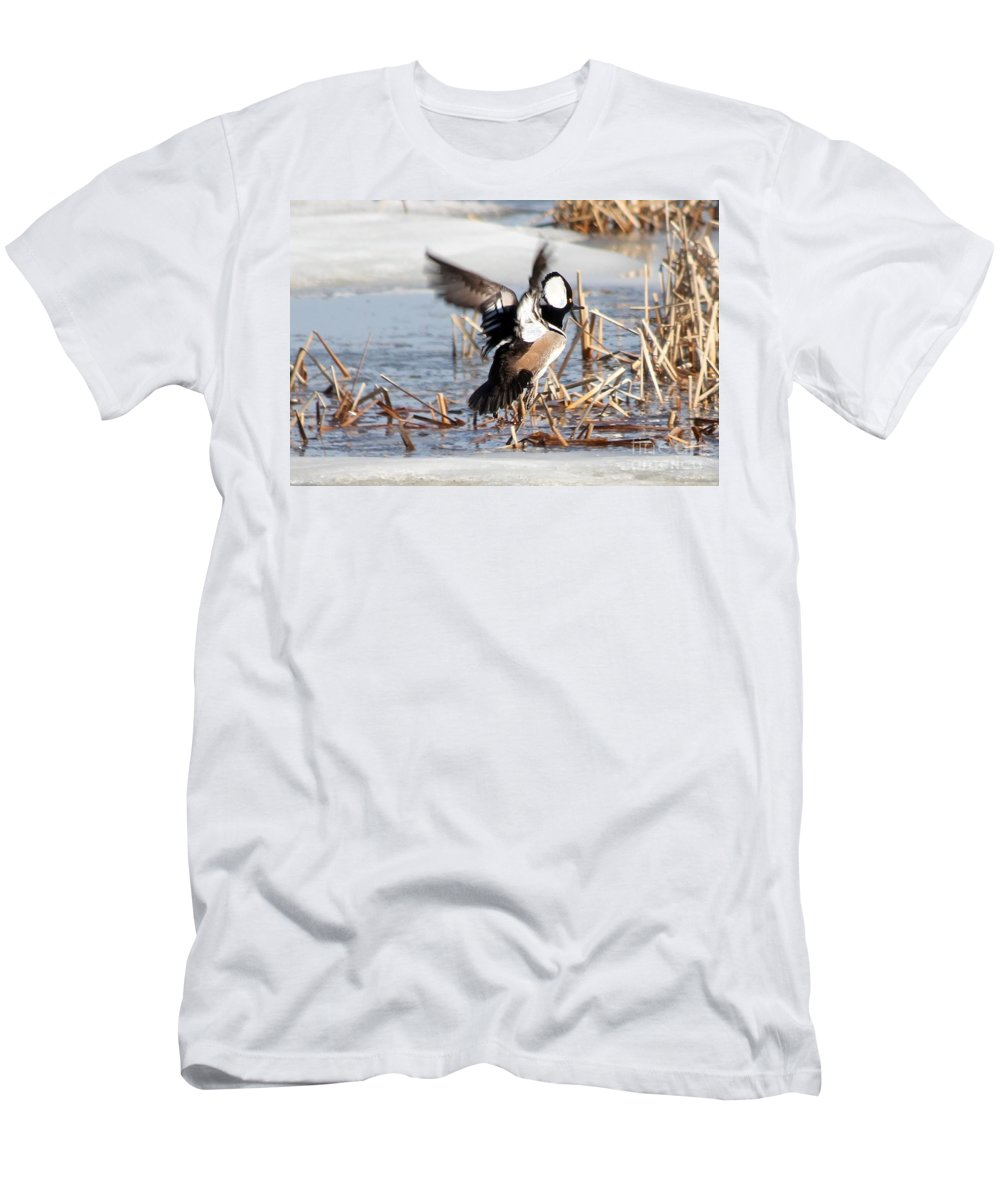 Hodded Men's T-Shirt (Athletic Fit) featuring the photograph Hooded Merganser by Lori Tordsen