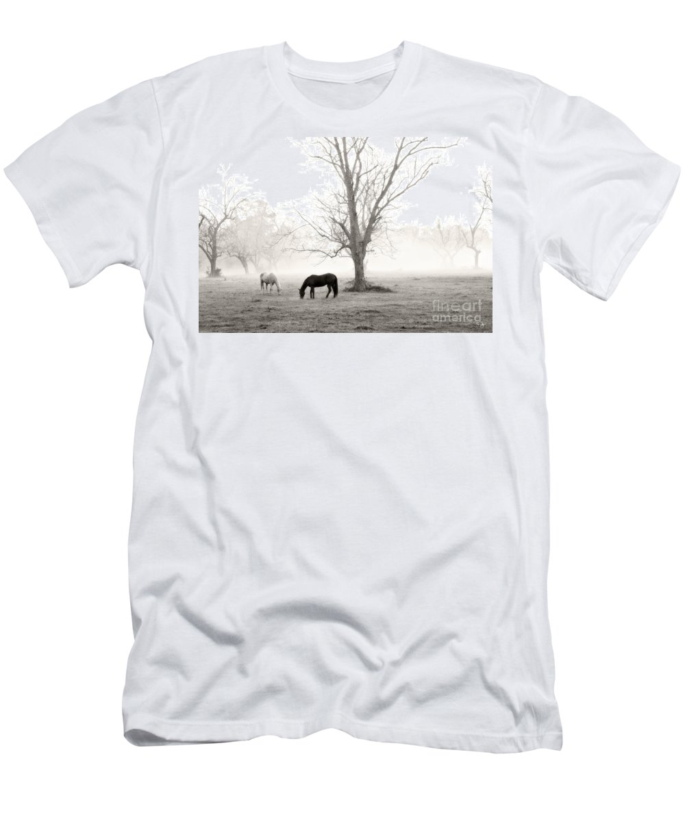 Magical Morning Men's T-Shirt (Athletic Fit) featuring the photograph Magical Morning by Scott Pellegrin