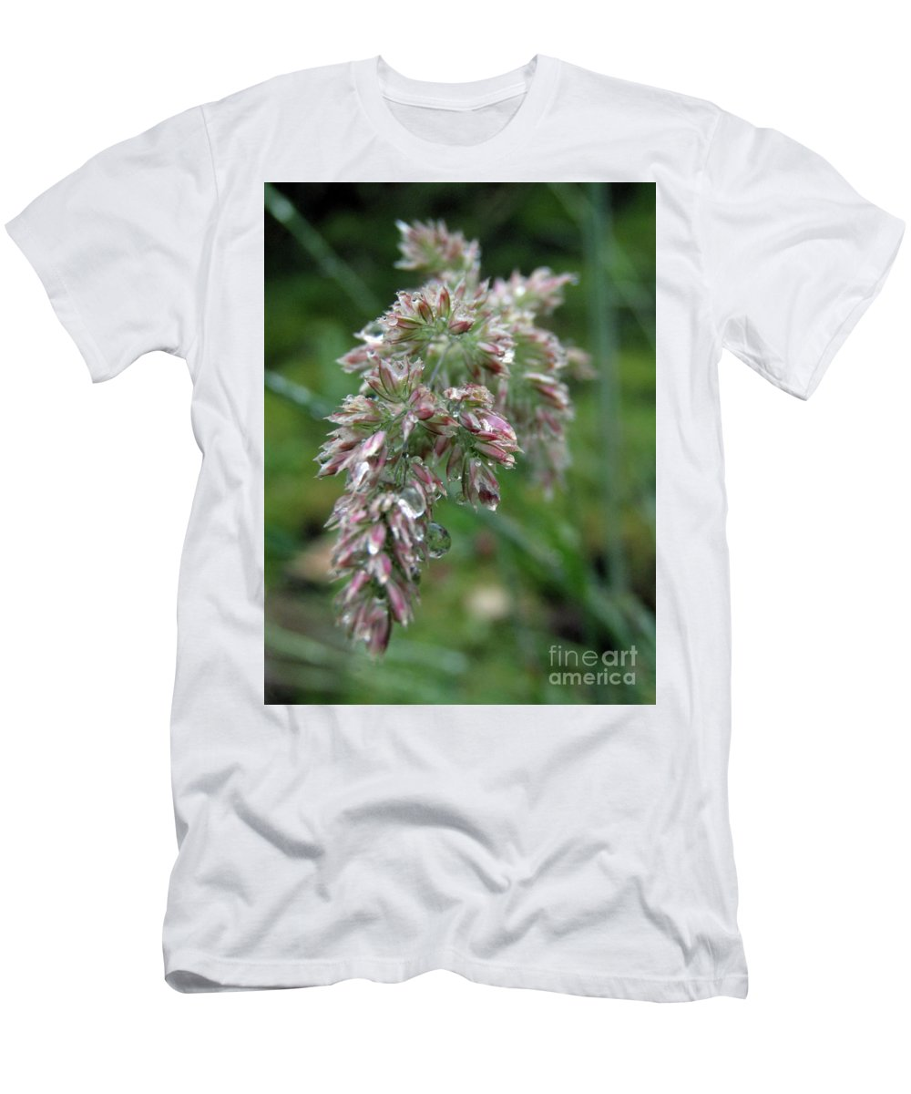 Ryegrass Men's T-Shirt (Athletic Fit) featuring the photograph Morning Dewdrops by Kim Tran