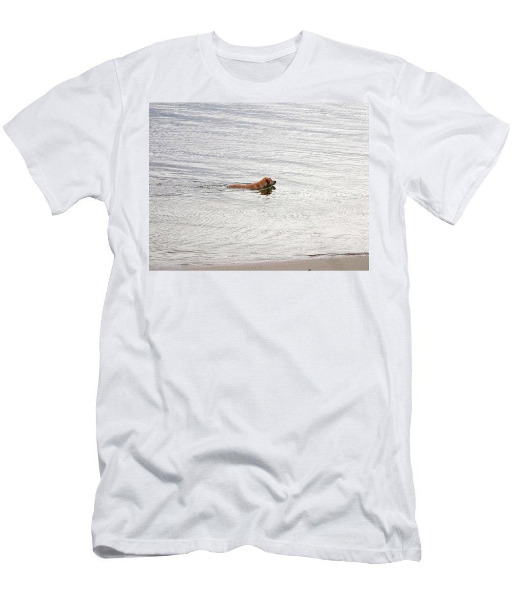 Golden Labrador Retriever Men's T-Shirt (Athletic Fit) featuring the photograph 3 - Golden Lab Lovin Life by Joseph Keane