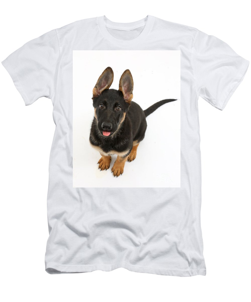 German Shepherd Dog Men's T-Shirt (Athletic Fit) featuring the photograph German Shepherd Puppy by Mark Taylor