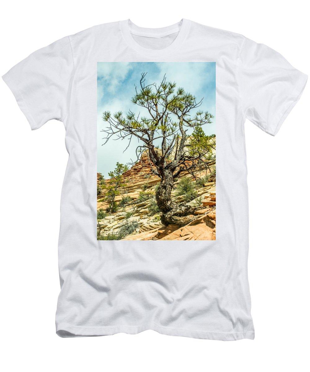 Zion Men's T-Shirt (Athletic Fit) featuring the photograph Zion Canyon National Park Utah by Alex Grichenko
