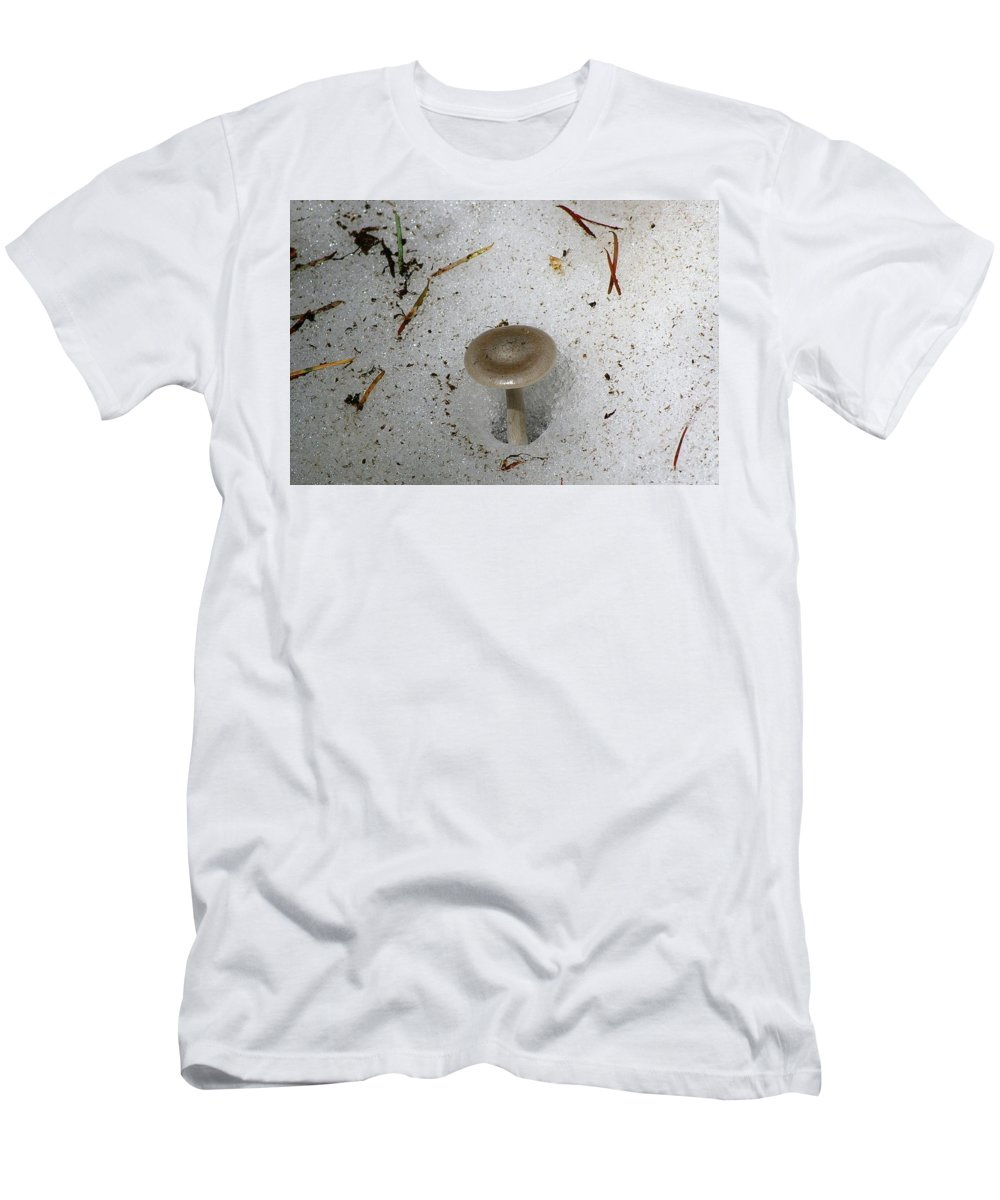 Mushrooms Men's T-Shirt (Athletic Fit) featuring the photograph A Mushroom In Snow by Jeff Swan