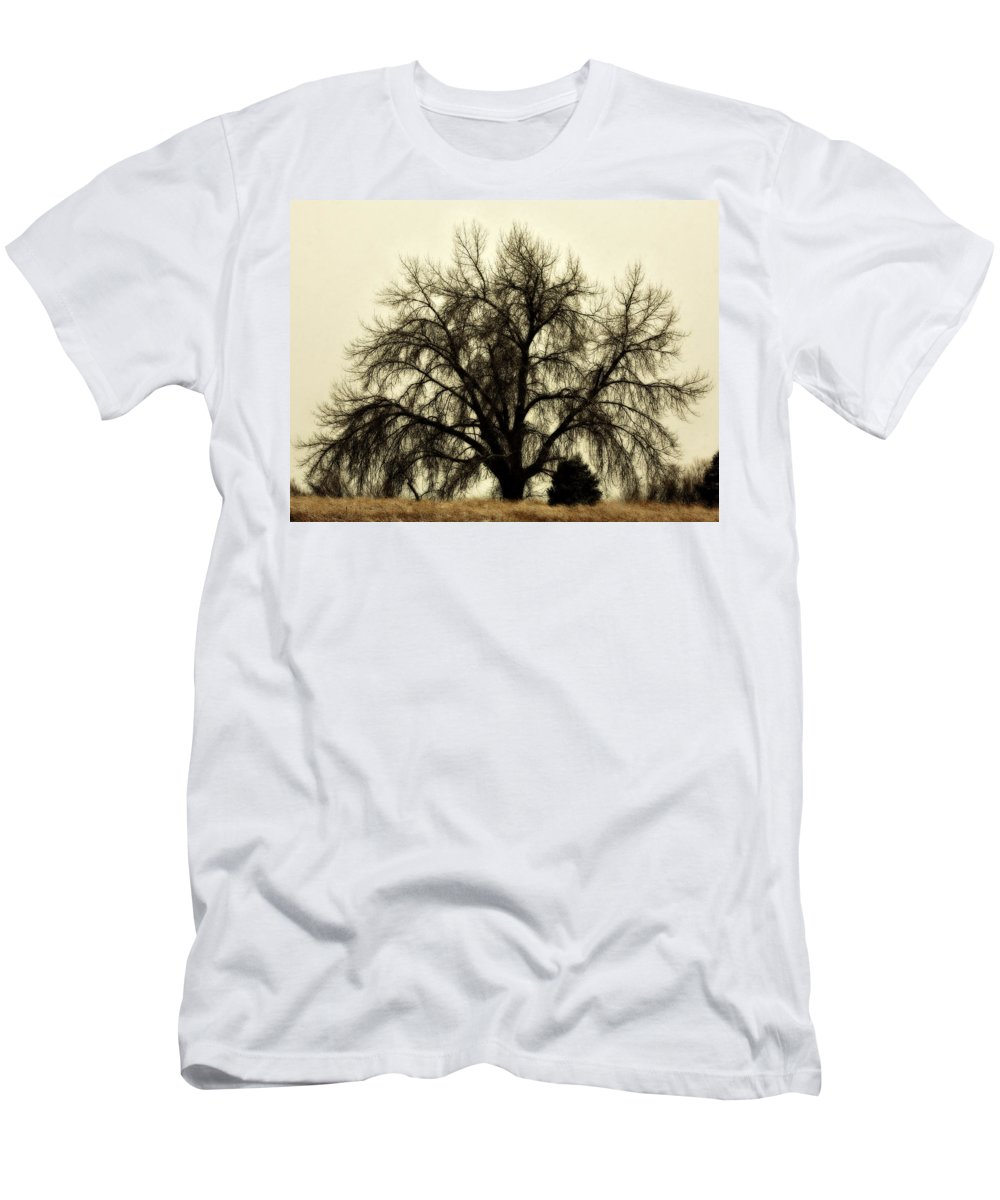 Tree Men's T-Shirt (Athletic Fit) featuring the photograph A Winter's Day by Marilyn Hunt