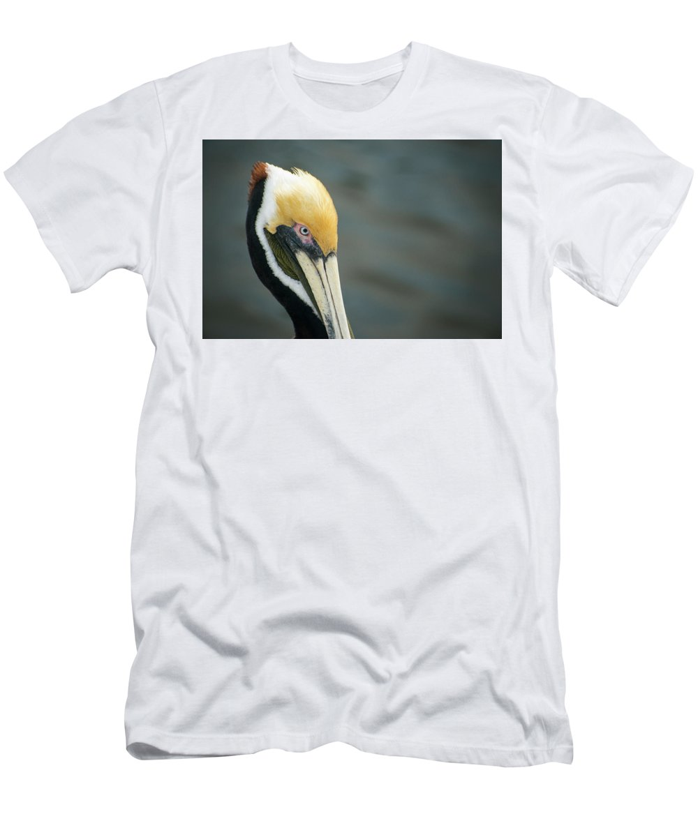 Pelican Men's T-Shirt (Athletic Fit) featuring the photograph Angry Pelican by Gabriel Jardim