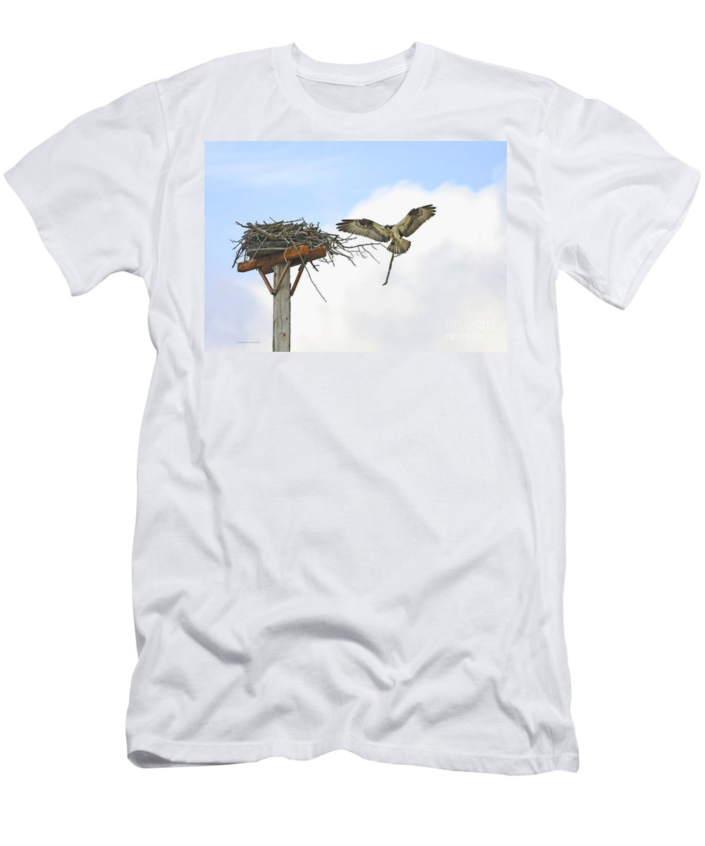 Osprey Men's T-Shirt (Athletic Fit) featuring the photograph Another Twig For The Nest by Deborah Benoit