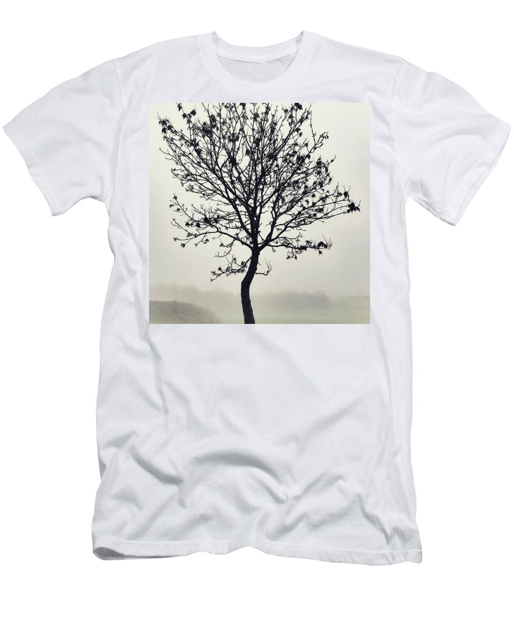 Tree T-Shirt featuring the photograph Another Walk Through The by John Edwards