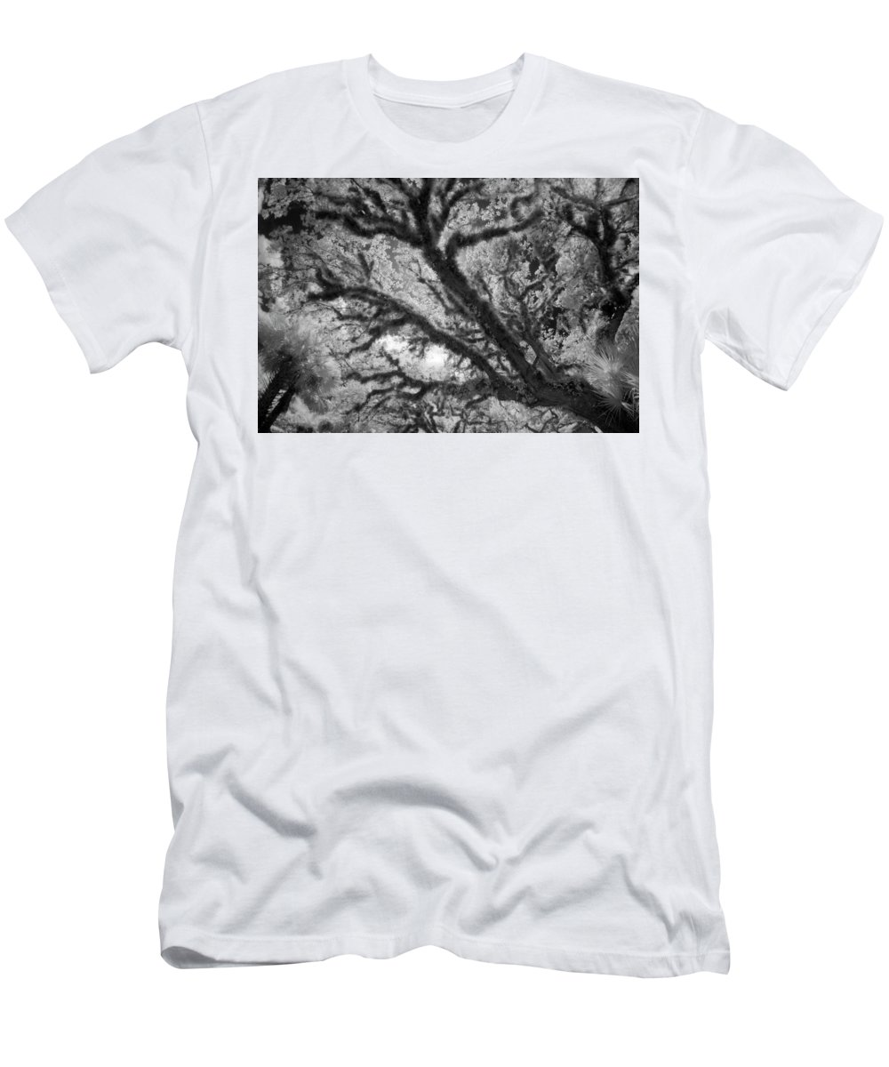 Trees Men's T-Shirt (Athletic Fit) featuring the photograph Arboreal Plateau 1 by Gary Bartoloni