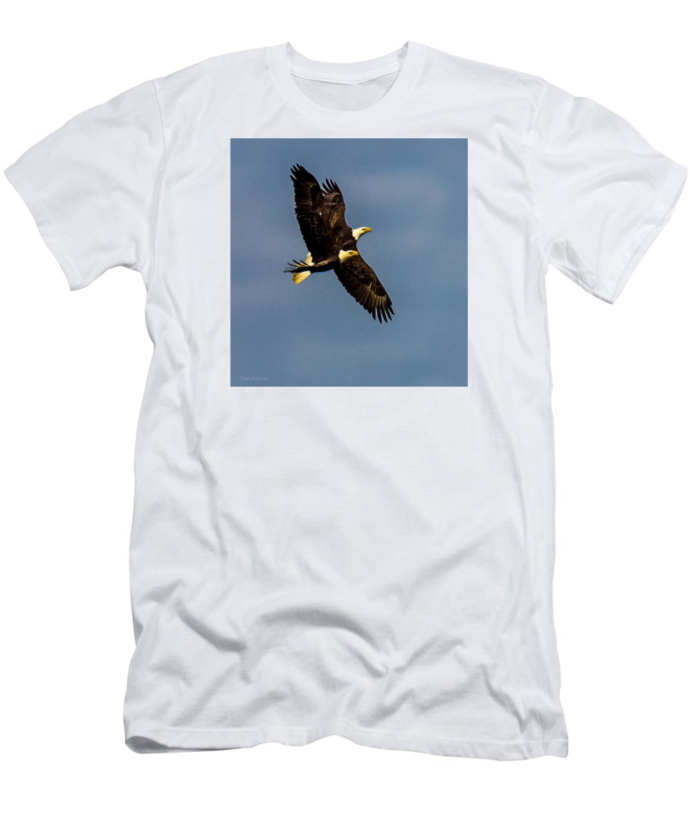 Bald Eagles Men's T-Shirt (Athletic Fit) featuring the photograph As One by Travis Boyd