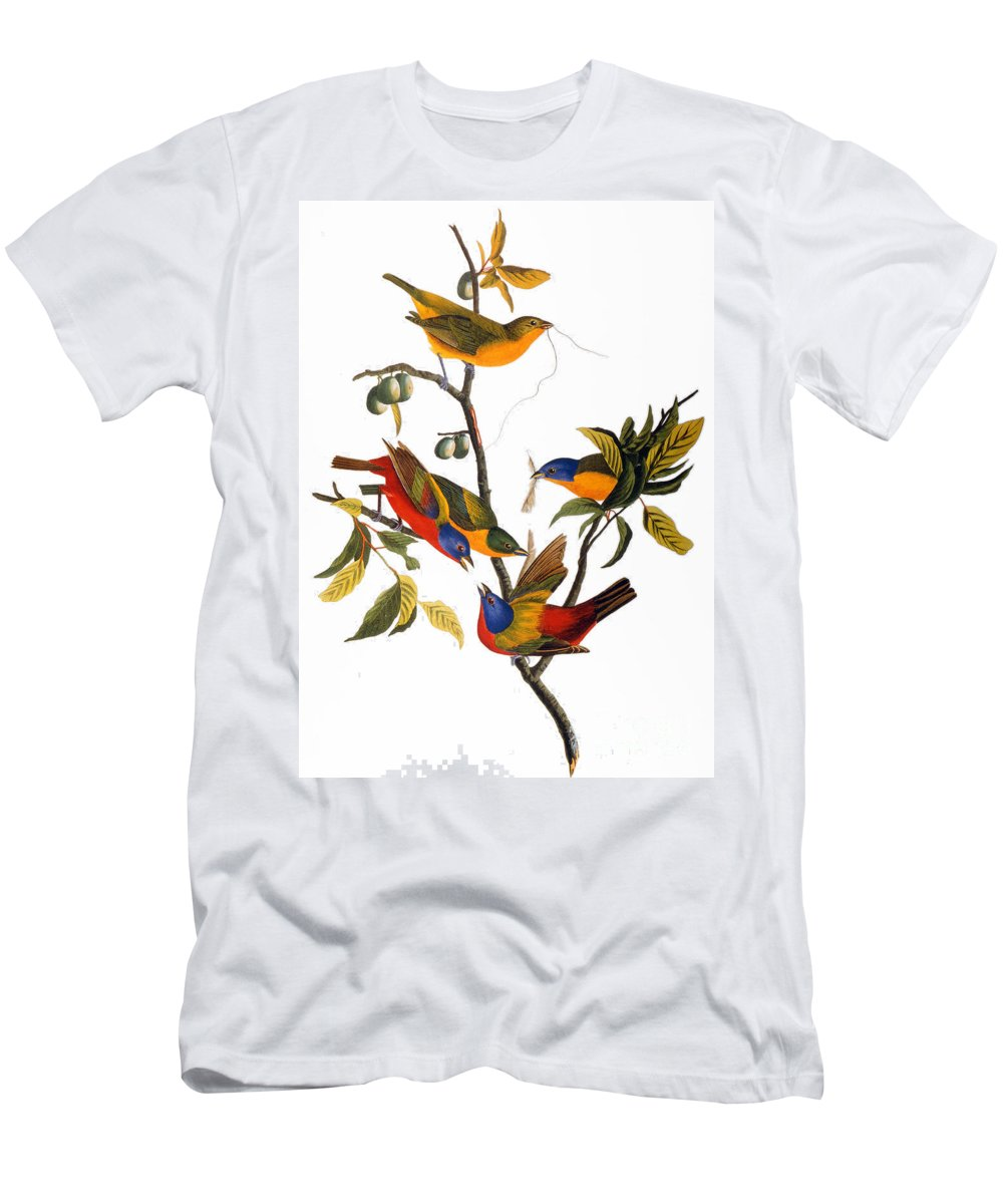1827 Men's T-Shirt (Athletic Fit) featuring the photograph Bunting, 1827 by John James Audubon