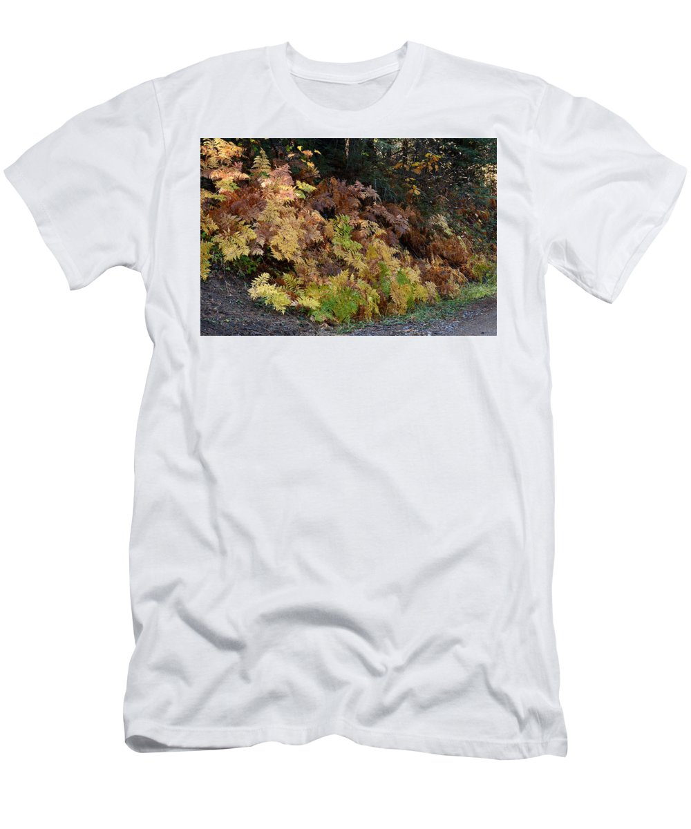 Fern Men's T-Shirt (Athletic Fit) featuring the photograph Autumn Ferns by Michael Allred