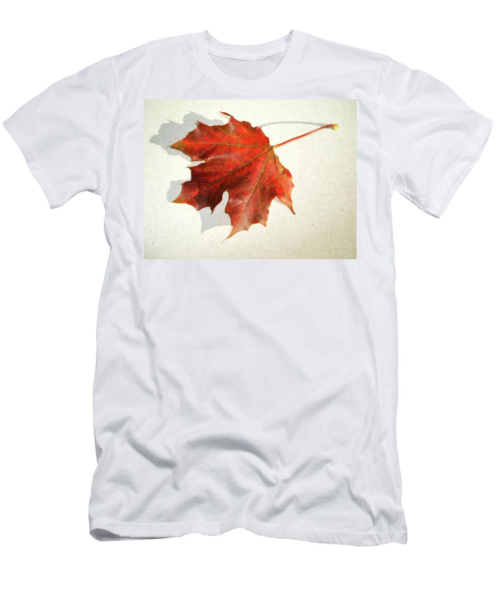 Brown Leaf Men's T-Shirt (Athletic Fit) featuring the photograph Autumn Leaf by Cliff Norton