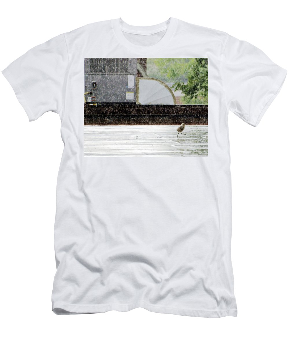 Animal Men's T-Shirt (Athletic Fit) featuring the photograph Baby Seagull Running In The Rain by Bob Orsillo