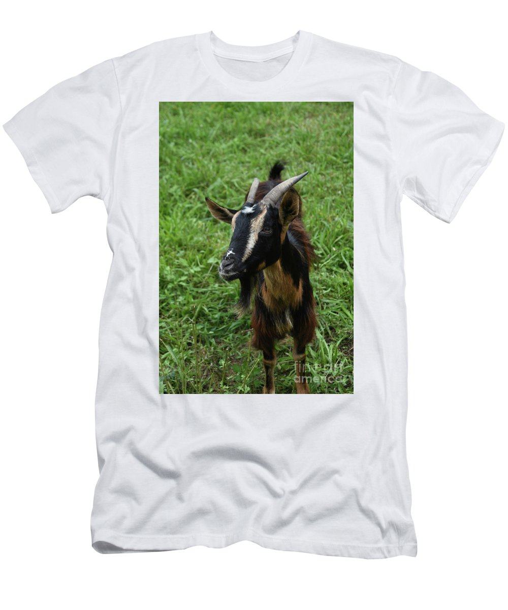 Goat Men's T-Shirt (Athletic Fit) featuring the photograph Beautiful Face Of A Billy Goat With Tan And Black Silky Fur by DejaVu Designs
