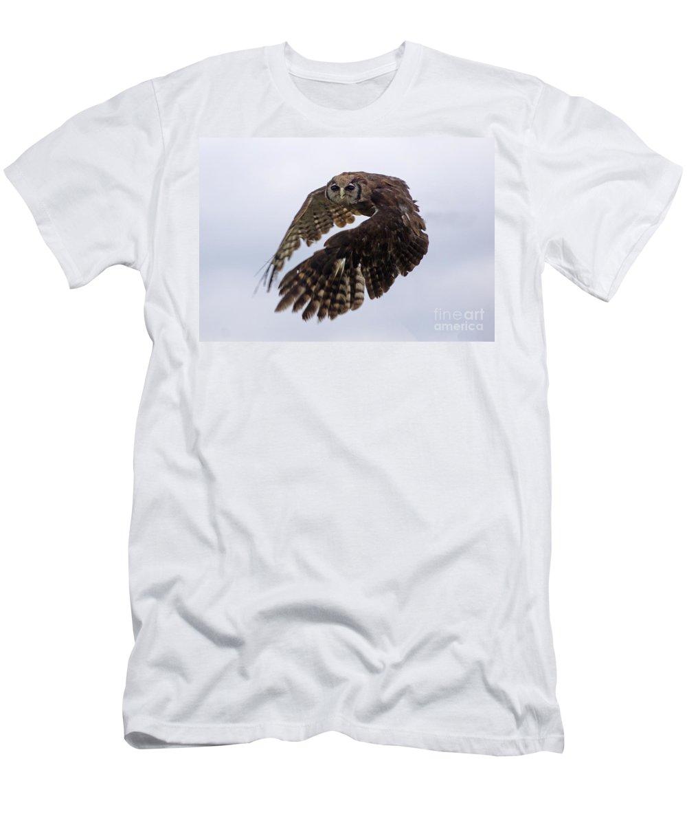 Birds Men's T-Shirt (Athletic Fit) featuring the photograph Birds 48 by Ben Yassa