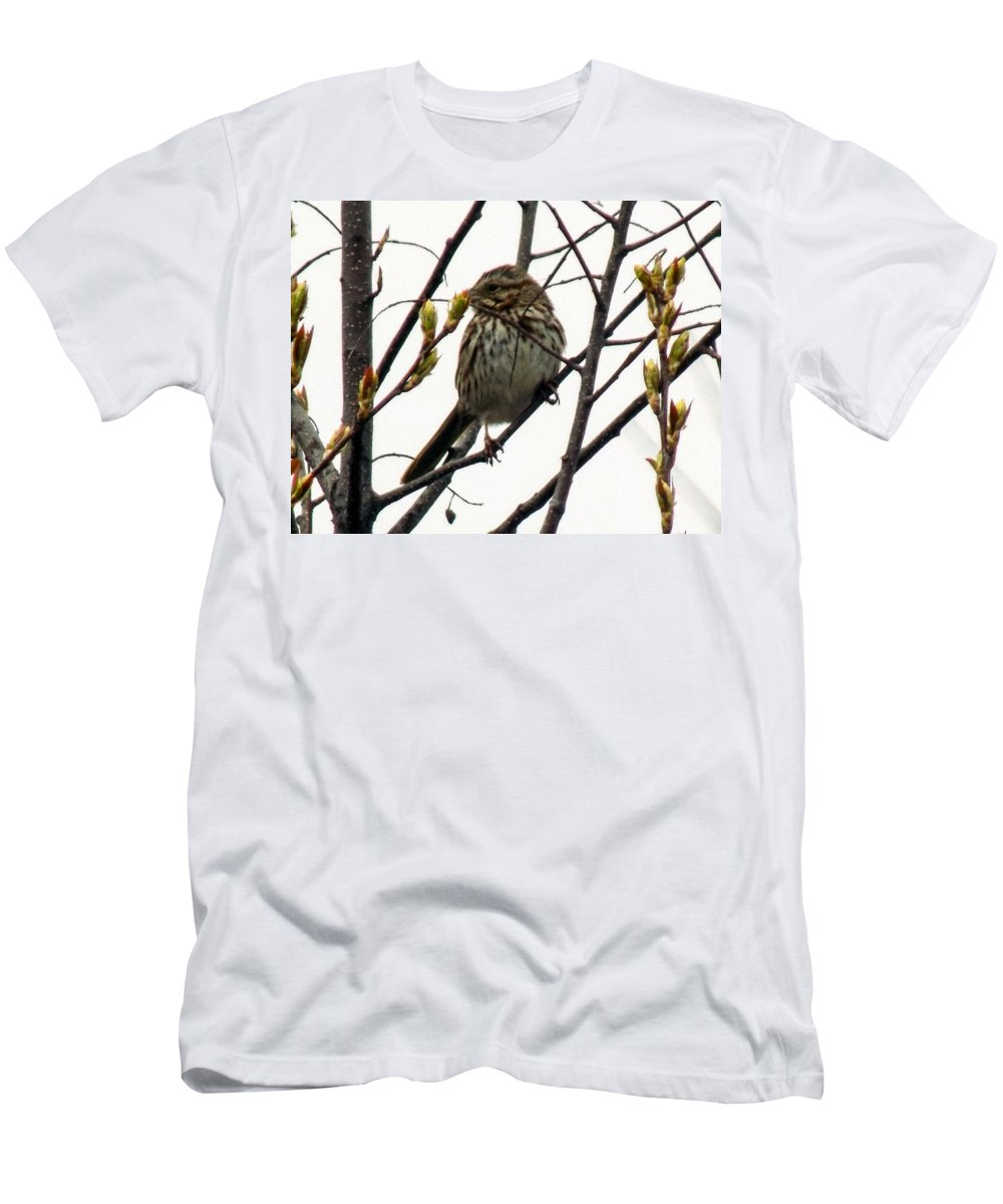Bird Men's T-Shirt (Athletic Fit) featuring the photograph Birdy Pose by William Tasker