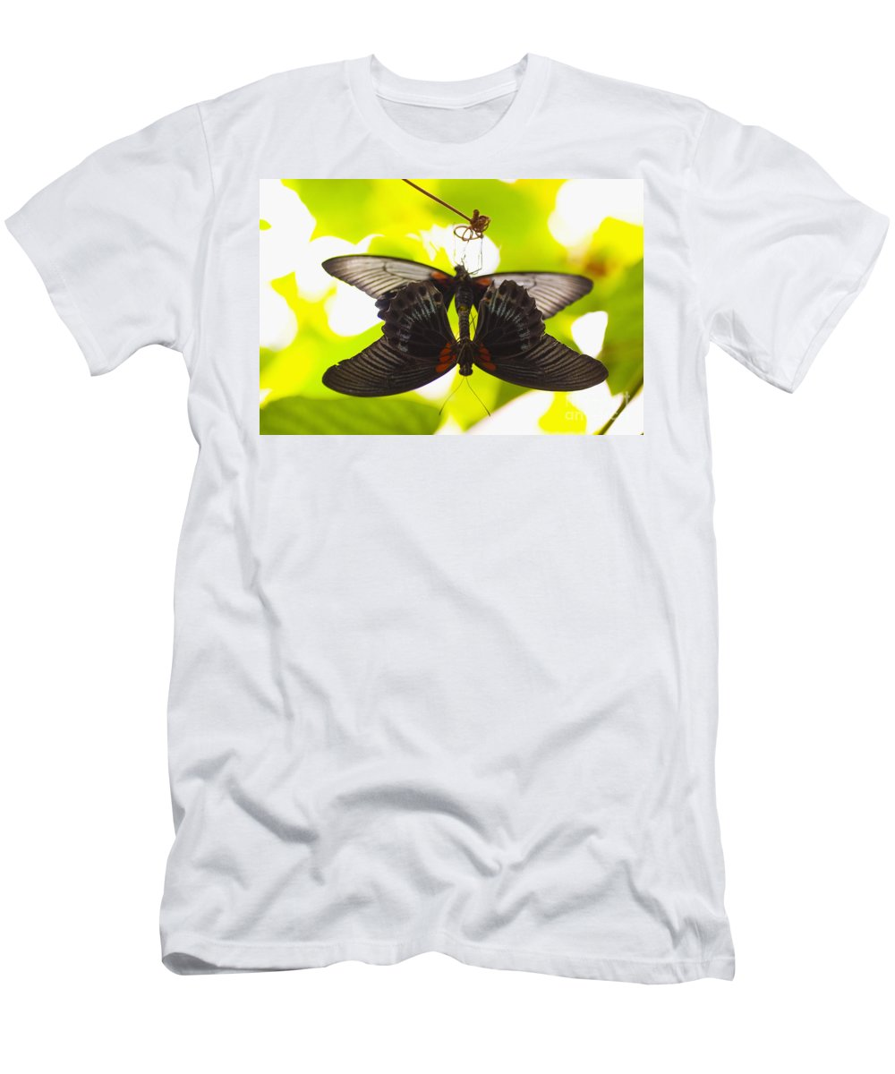 16-pfs0083 Men's T-Shirt (Athletic Fit) featuring the photograph Black And Red Butterflies by Tomas del Amo - Printscapes