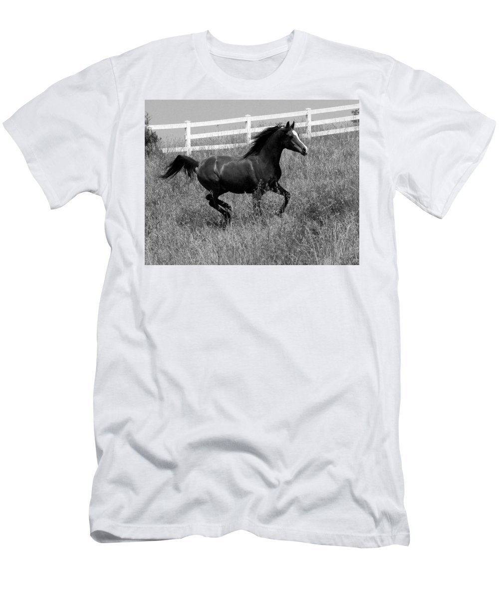 Horse Men's T-Shirt (Athletic Fit) featuring the photograph Black And White Steed by Michael Barry