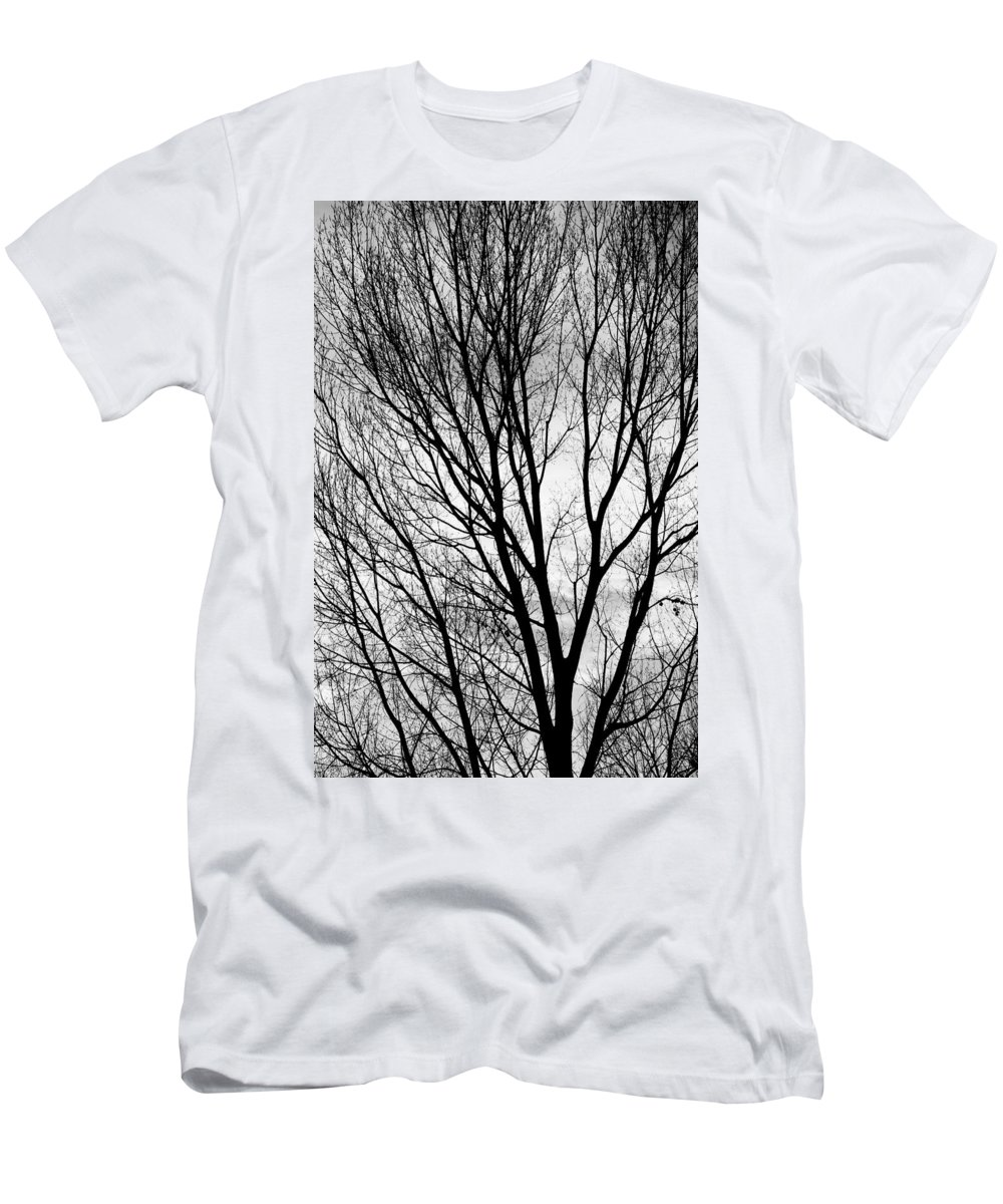 Silhouette Men's T-Shirt (Athletic Fit) featuring the photograph Black And White Tree Branches Silhouette by James BO Insogna