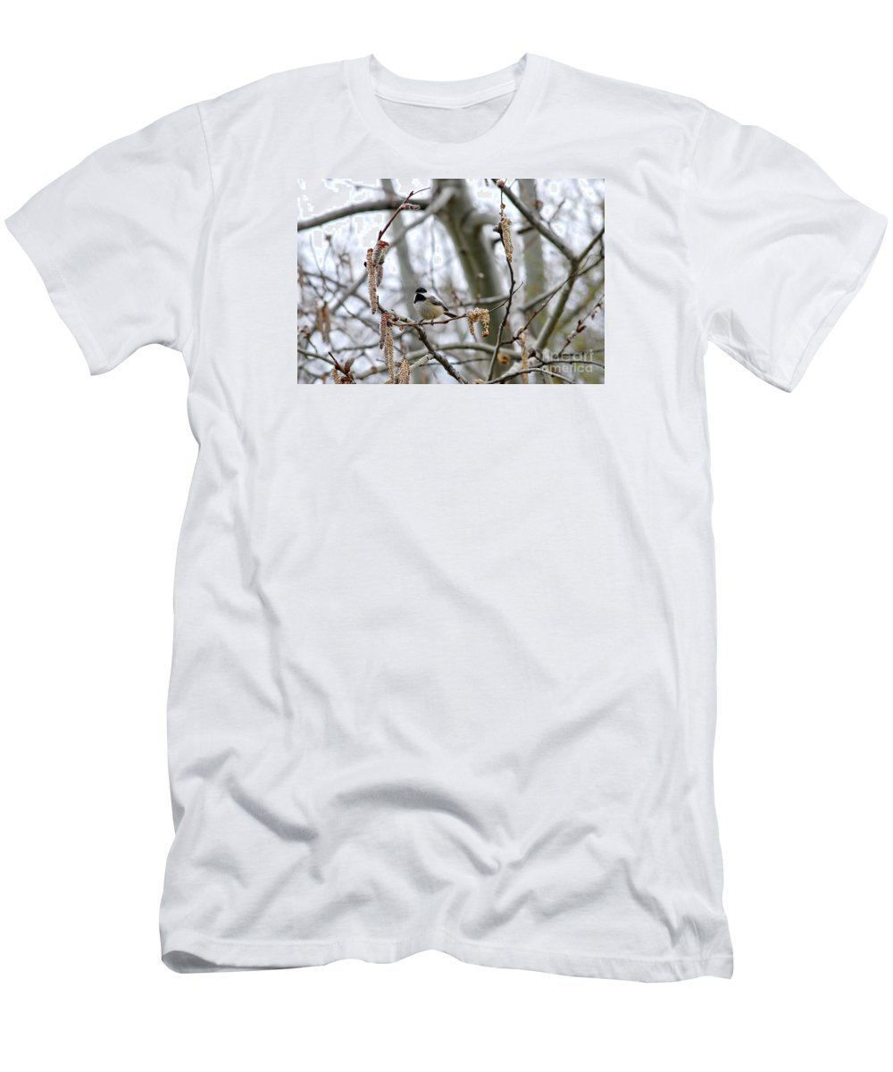 Beautiful Men's T-Shirt (Athletic Fit) featuring the photograph Black-capped Chickadee 20120321_39b by Tina Hopkins
