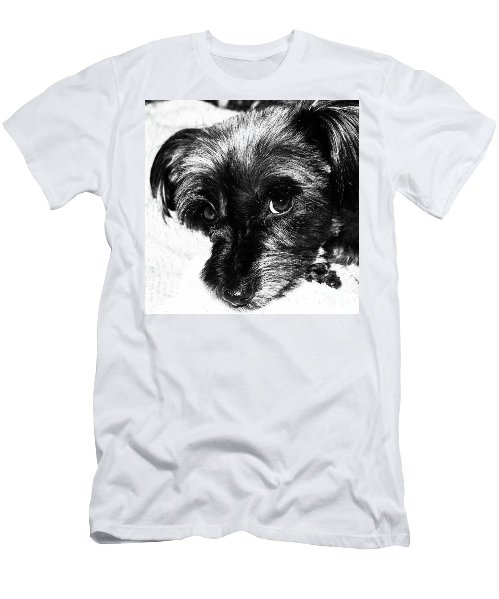 Dog Men's T-Shirt (Athletic Fit) featuring the photograph Black Dog Looking At You by Josephine Cleopahrt