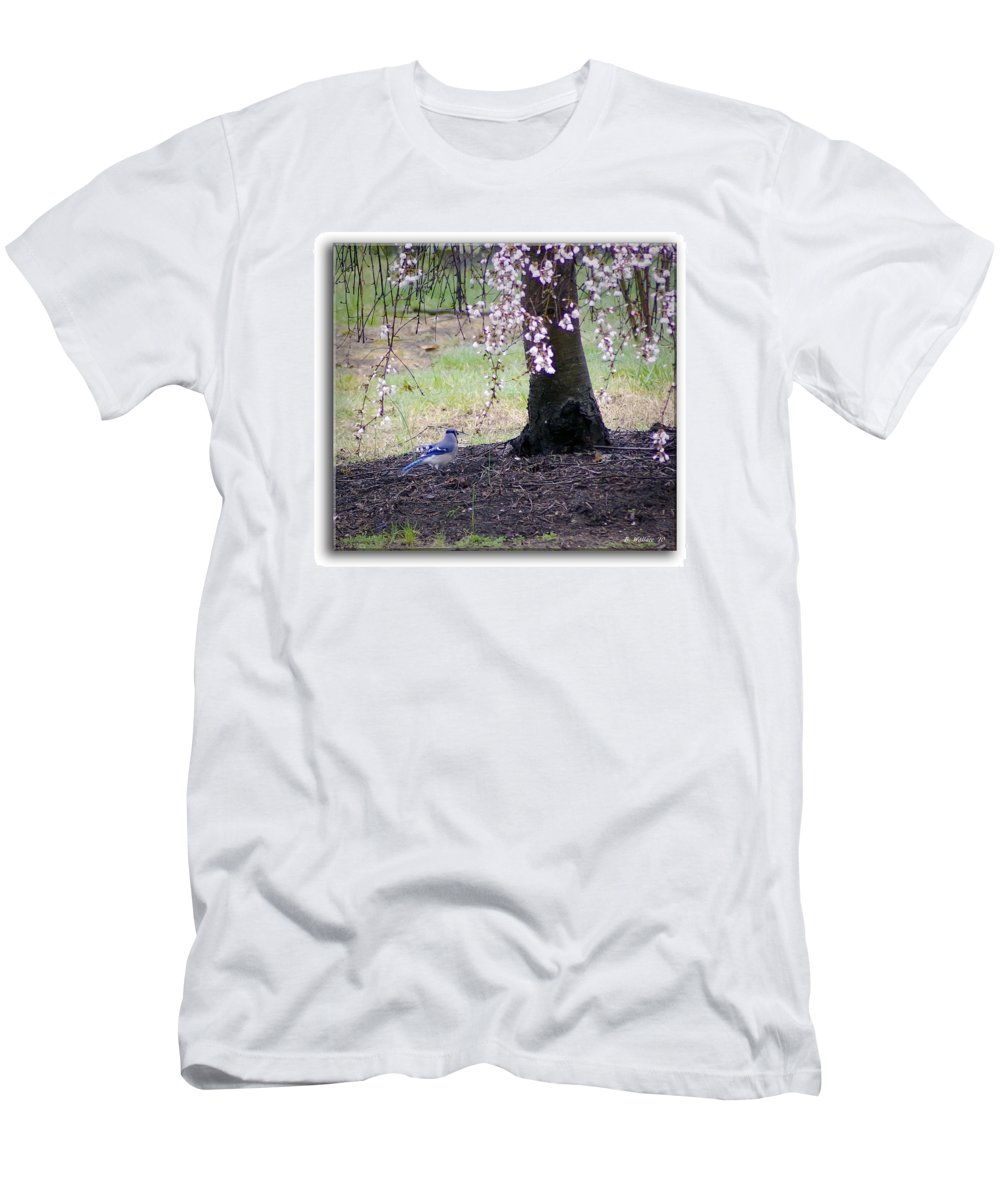 2d Men's T-Shirt (Athletic Fit) featuring the photograph Blue Jay by Brian Wallace