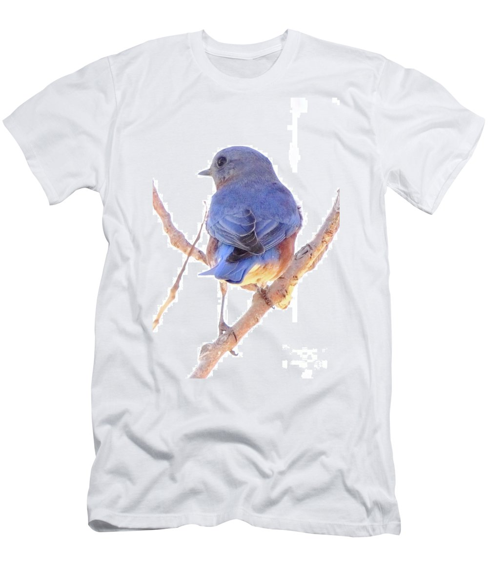 Animal Men's T-Shirt (Athletic Fit) featuring the photograph Bluebird On White by Robert Frederick