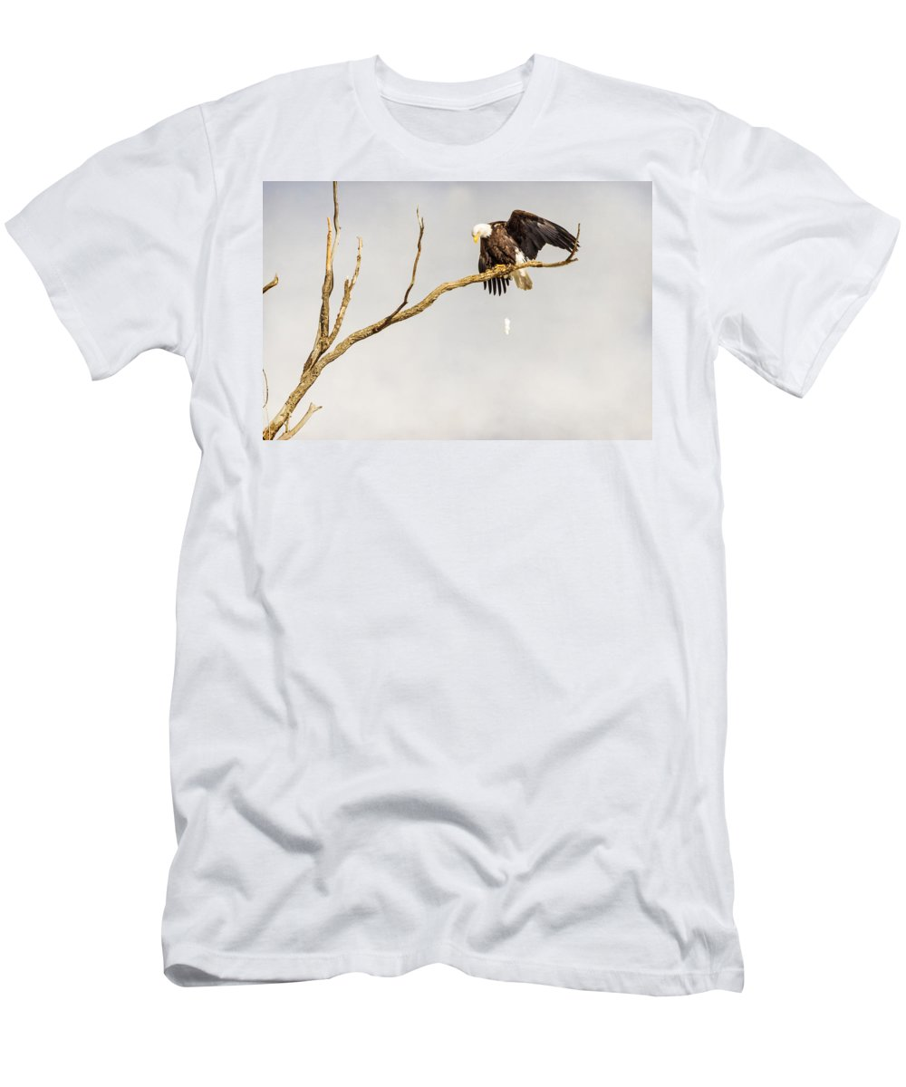 Eagle Men's T-Shirt (Athletic Fit) featuring the photograph Bombs Away by James BO Insogna