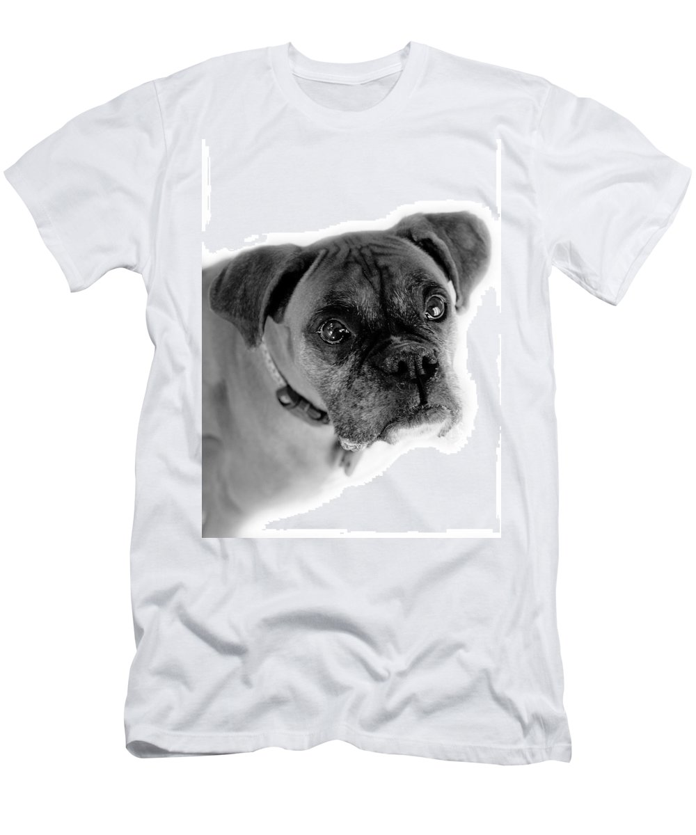 Boxer Men's T-Shirt (Athletic Fit) featuring the photograph Boxer Dog by Marilyn Hunt