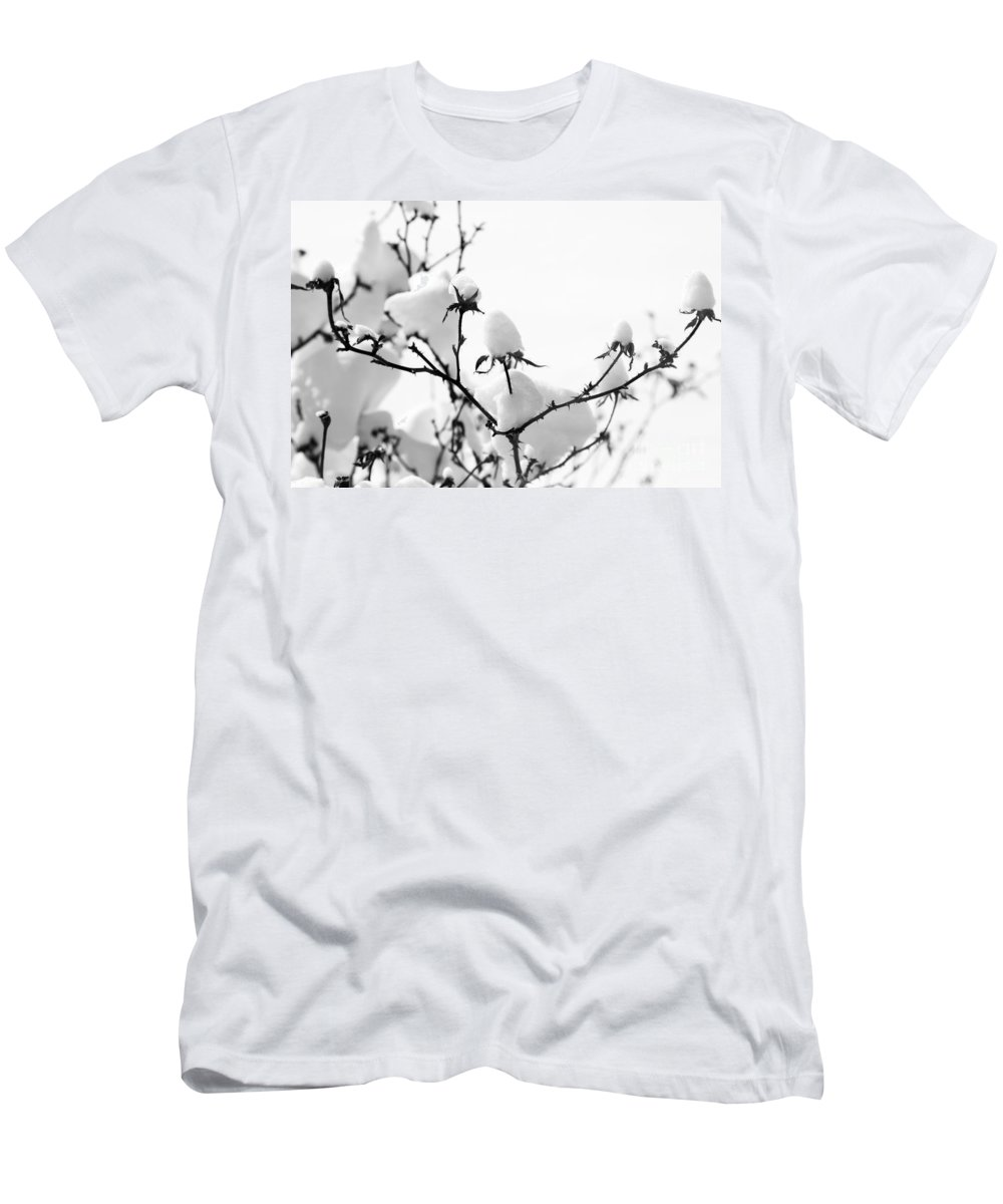 Branches Men's T-Shirt (Athletic Fit) featuring the photograph Branches by Amanda Barcon