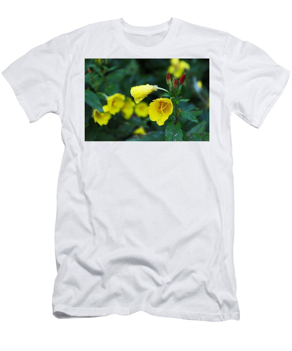 Flowers Men's T-Shirt (Athletic Fit) featuring the photograph Budding Friends - Missouri Primrose by Spencer Bush
