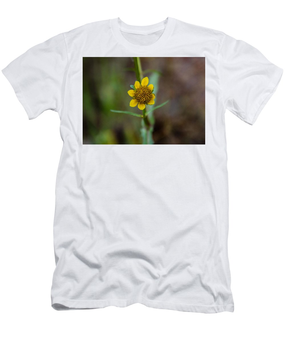 Yellow Men's T-Shirt (Athletic Fit) featuring the photograph Build Me Up, Buttercup by Samantha Flamingos