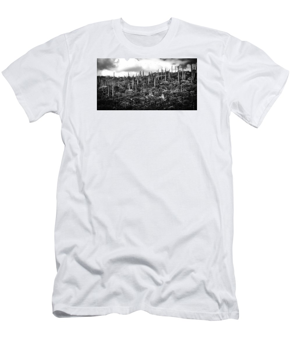 Mountain Men's T-Shirt (Athletic Fit) featuring the photograph Cactus Field by David Resnikoff