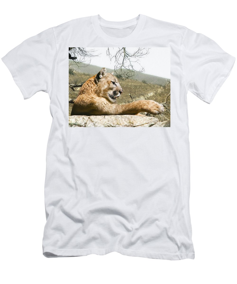 Cougar Men's T-Shirt (Athletic Fit) featuring the photograph California Cougar by Lynn Andrews